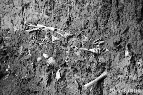 山西高平发现疑似长平之战尸骨坑!图片详情曝光长平之战尸骨坑啥样的