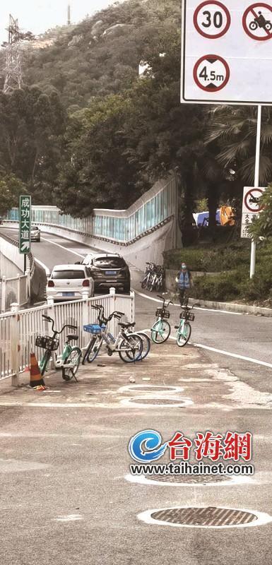 """共享单车""""厦门经验""""铸就文明风景线"""