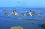 第三届数字中国建设峰会迎宾曲MV《天下福地 最美福州》