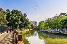 福州白馬河:福船泛舟 古風拂面