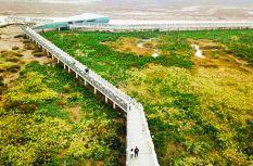 福州:景色迷人的闽江河口国家湿地公园