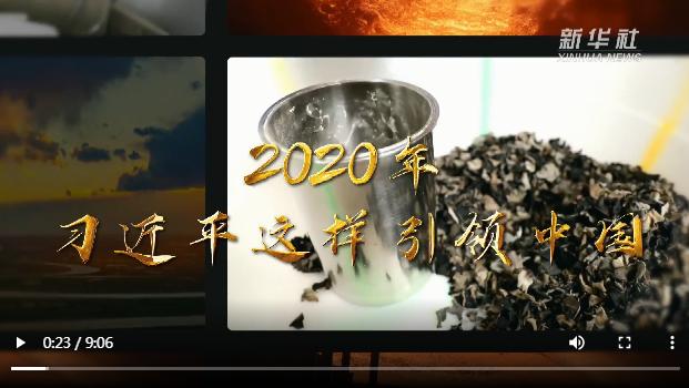 2020年 习近平这样引领中国