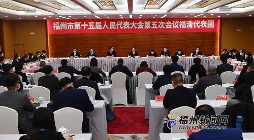林宝金参加市十五届人大五次会议福清代表团审议