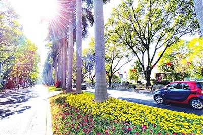福州:满眼绿植高颜值 两段长廊西湖美