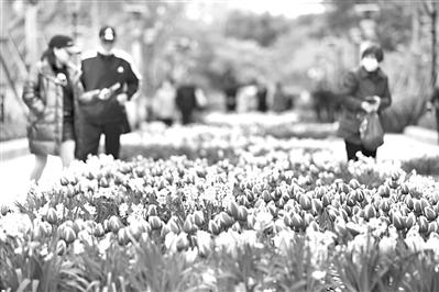 福州公园游客如织 赏花游成最爱