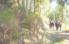 竹林深處,矗立著1343座無字豐碑