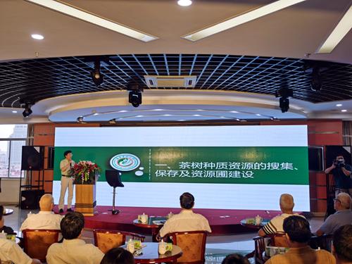 孙威江教授带来最新的茶树种质资源研究和新品种选育创新成果
