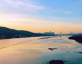 有福之州|花海公園的十二小時