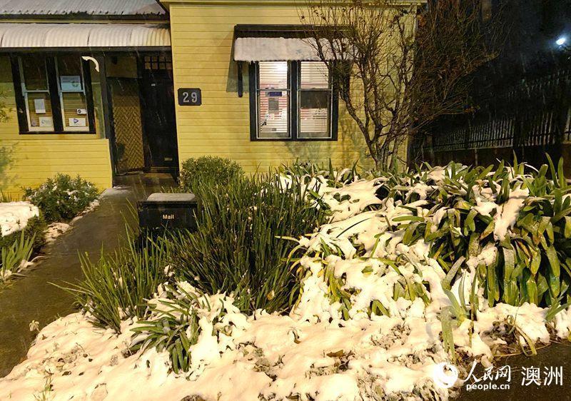 澳大利亚蓝山迎来冬季第一场降雪