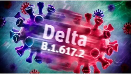 世卫组织:德尔塔变异株传播至132个国家和地区