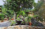 """福州:""""美丽庭院""""创建 以家庭小美汇聚乡村大美"""