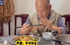 爺爺假裝趕走貓實際偷偷投食怎么回事?現場畫面曝光太暖心了