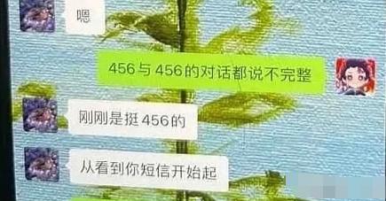 【星瓜】456是什么意思什么梗?456背后含义介绍